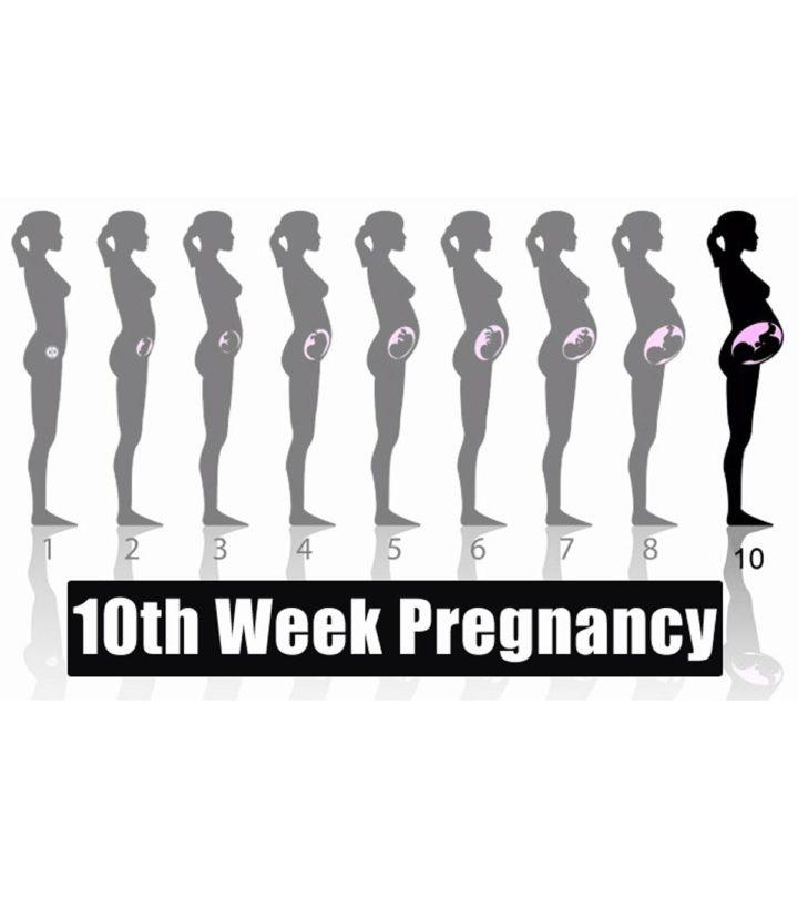 10th Week Pregnancy