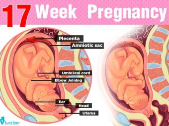 17th Week Pregnancy: Symptoms, Baby Development, Tips And Body Changes