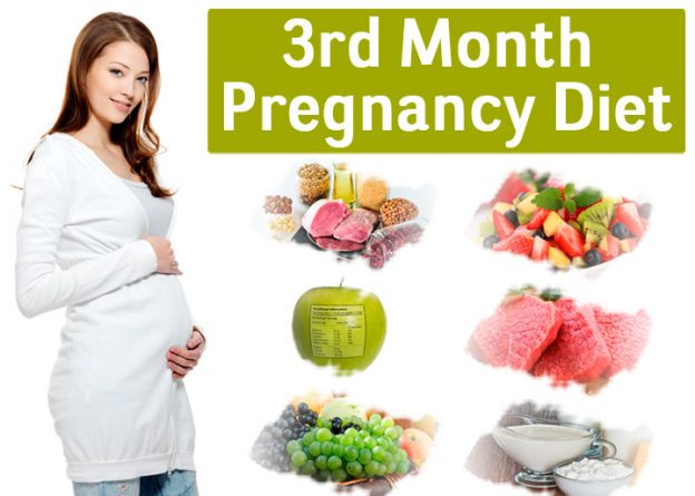 3rd month of pregnancy diet which foods to eat and avoid incnut incnut incnut featured image forumfinder Choice Image