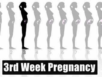 3rd Week Pregnancy: Symptoms, Baby Development And Body Changes