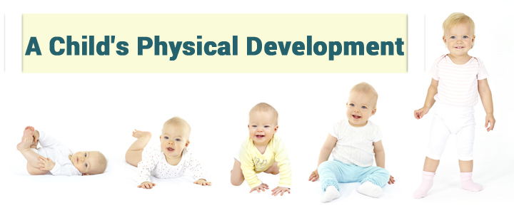 A Child's Physical Development