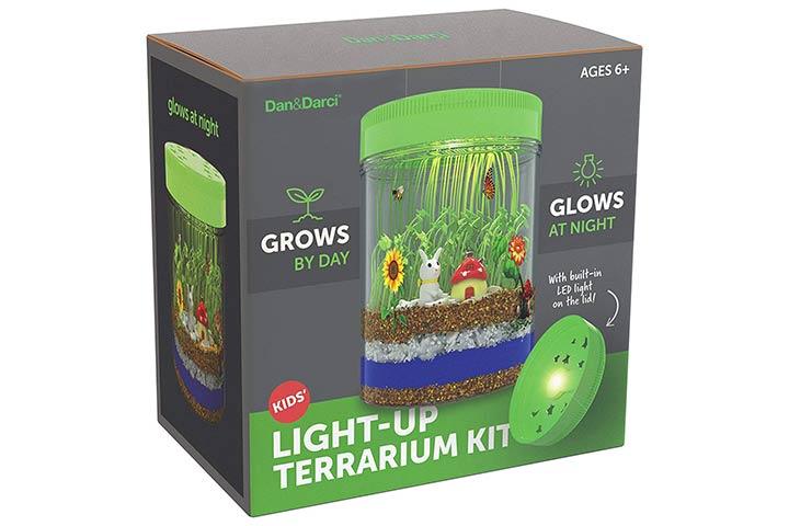 Dan&Darci Light-up Terrarium Kit for Kids