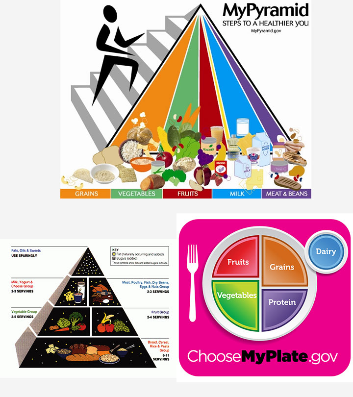 Food Pyramid For Kids And Teens