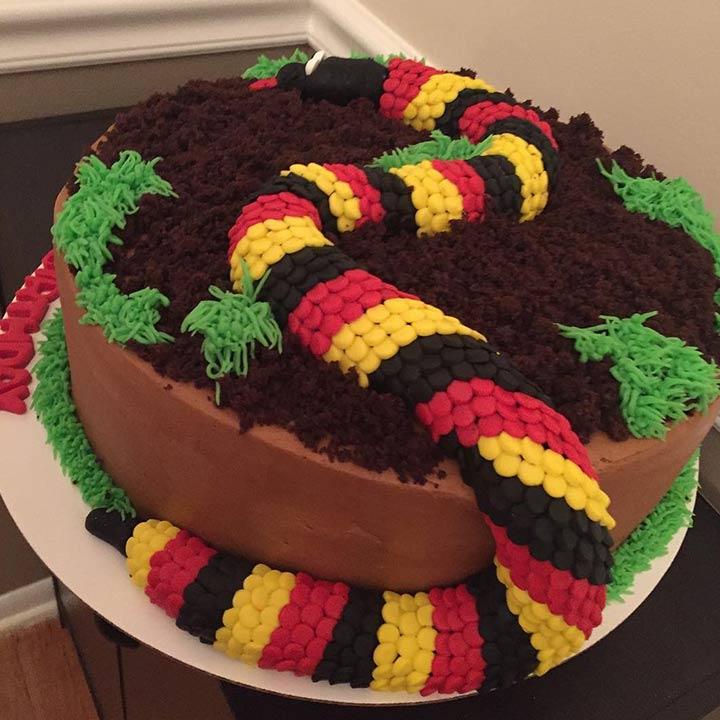 Reptiles cake