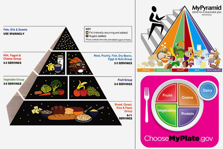 Food Nutrition New Piramid