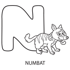Alphabet N for Numbat Coloring Page