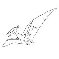 Free Printable Pteranodon Dinosaur Coloring Pages