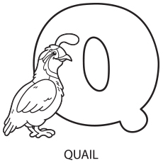 Alphabet Q Coloring pages