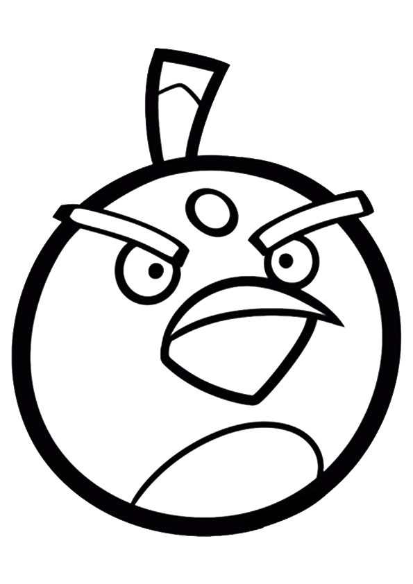 The-Bird-Bomb