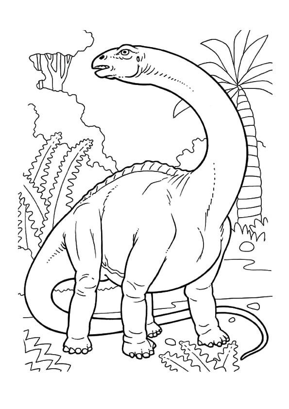 The-Book-Dinosaur