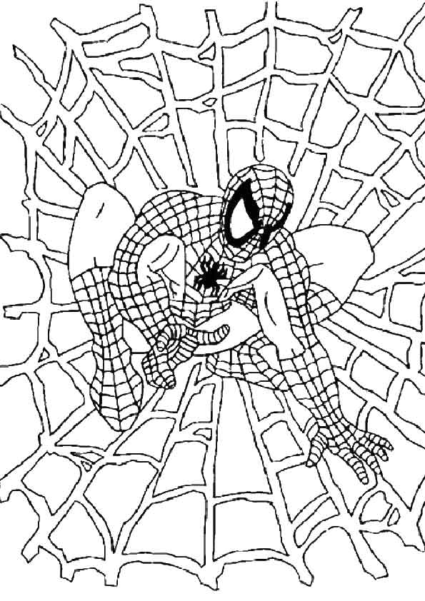 The-Spiderman-Web