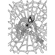 Spiderman in a Web Coloring WorkSheet