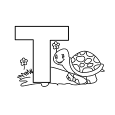 The-T-for-Tortoise-16