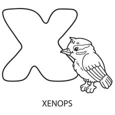 Alphabet X worksheet to Color