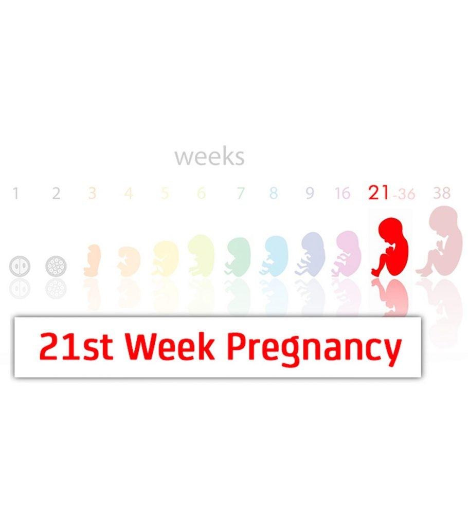 21st Week Pregnancy: Symptoms, Baby Development And Body Changes