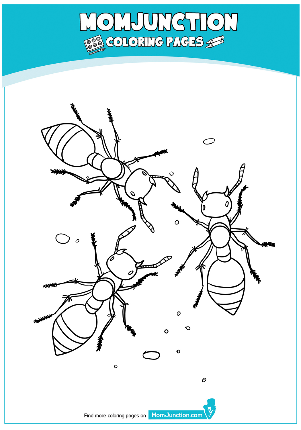 A-Printables-Ant-Coloring-Page-17