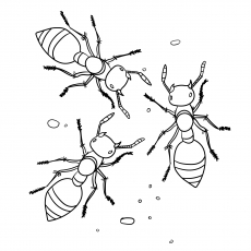 a printables ant coloringpage - Ant Coloring Page
