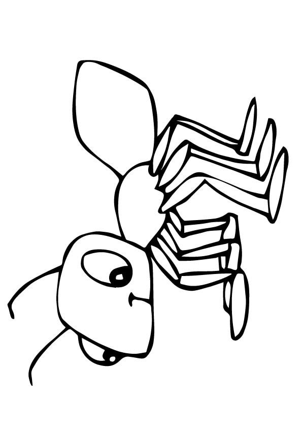 Ant-Hormiga