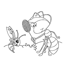 Ant-and-mosquito
