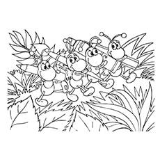 Ant-coloring-brash