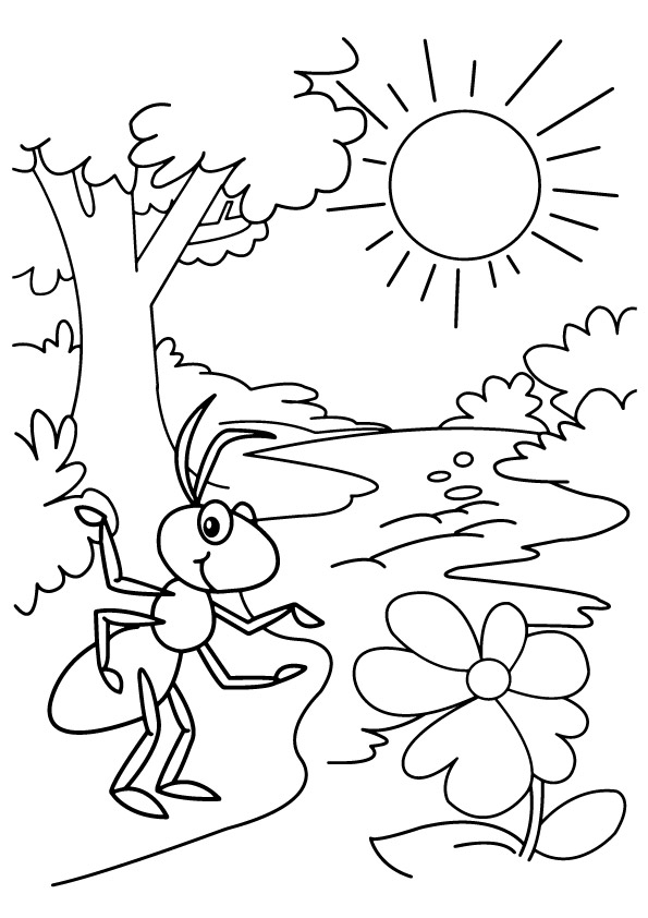 Ants-Coloring-sun-tree