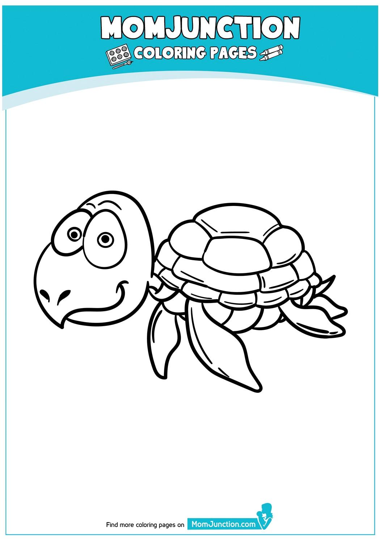 Cartoon-Turtle-17