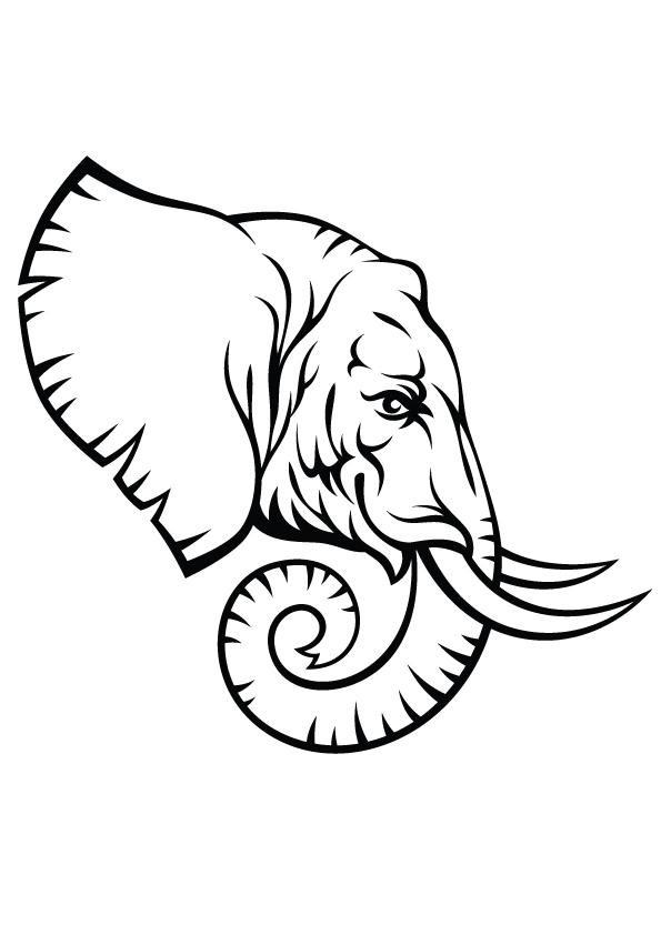 Elephant-head