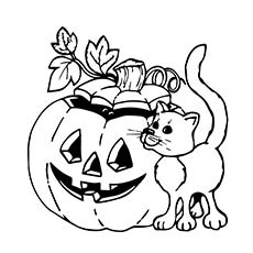 Wonderful Halloween Cat Coloring Pages