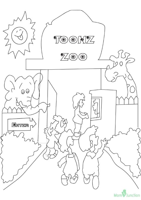 The-Animal-Zoo-16