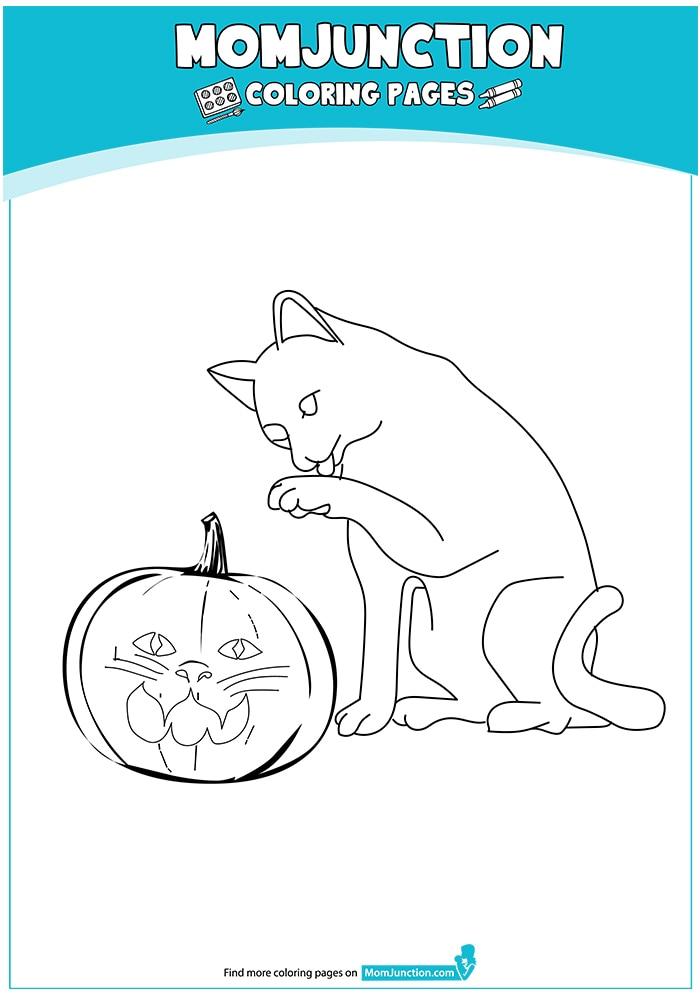 The-Cat-Pumpkin-16