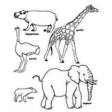 wild life giraffe and elephant coloring pages - Free Animal Coloring Pages