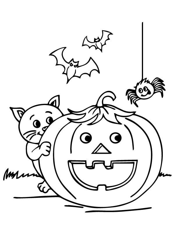 The-Halloween-Cat