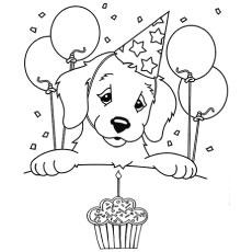 The-My-Birthday
