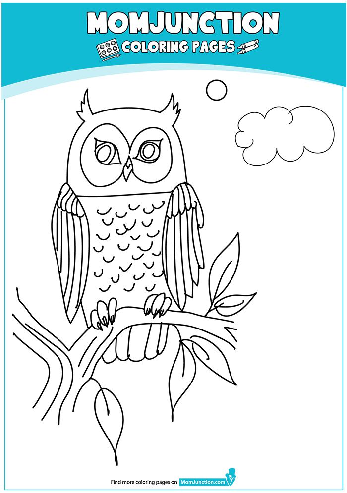 The-Owl-coloring-pages-16