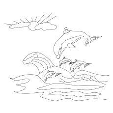 The Playful Dolphins coloring pages