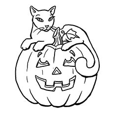 The-PumpkinCat-big