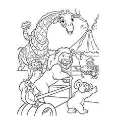 wild zoo zebra eating grass coloring pages - Coloring Pages Animals Printable