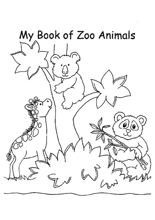 The-Zoo-Animals