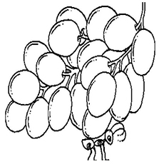 The Ant With Grapes