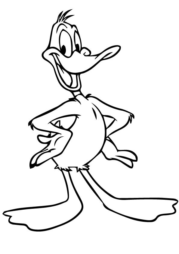 The-daffy-duck