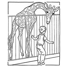 educational coloring pages zoo animals - photo#47