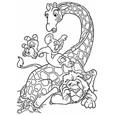 Wild Animal Rhinoceros Lion And Giraffe Coloring Pages