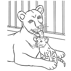 the lioness and her cub - Preschool Animal Coloring Pages