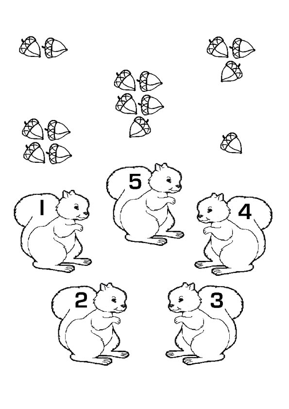 The-math-fun-with-squirrels