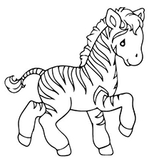 The-zebra-coloring