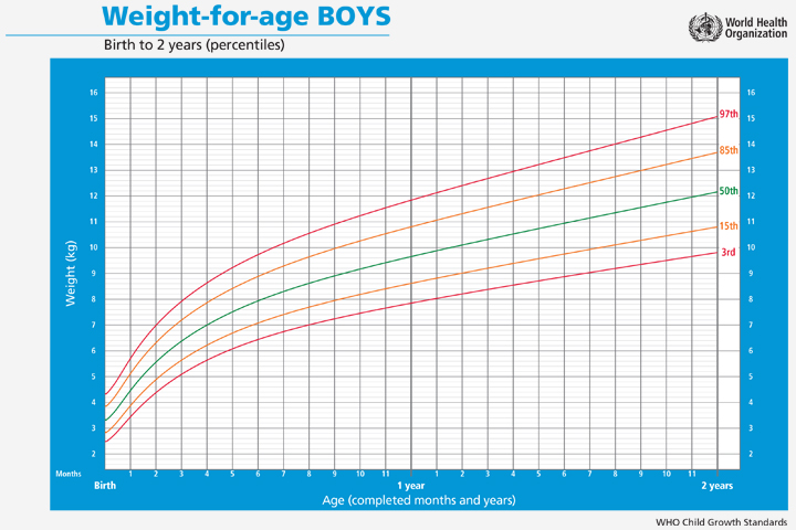Baby Boy Weight Chart for Age