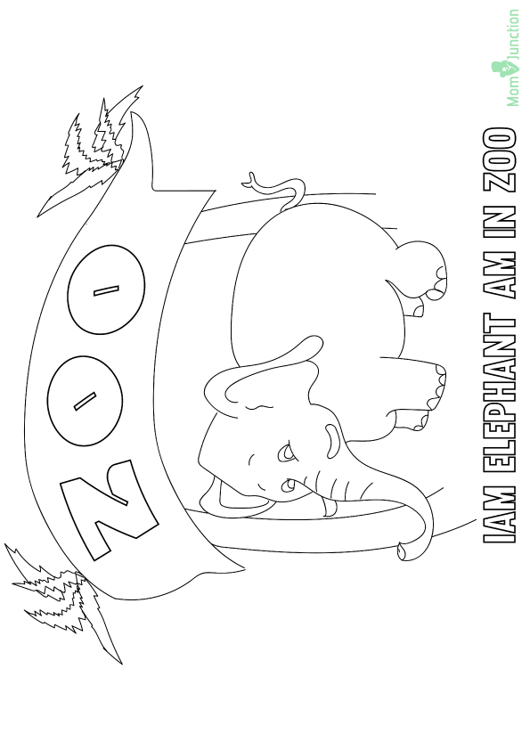 Zoo-16