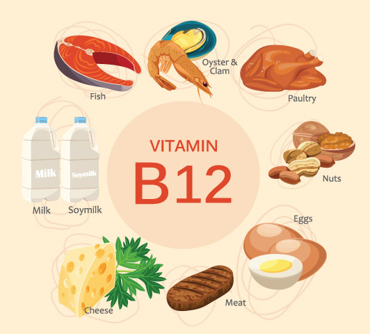Vitamin B Complex During Pregnancy - Vitamin B12