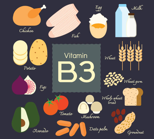 Vitamin B Complex During Pregnancy - Vitamin B3