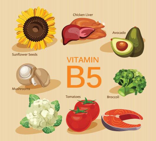 Vitamin B Complex During Pregnancy - Vitamin B5